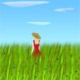 Blühende Frühlings-Wiese Stockbild