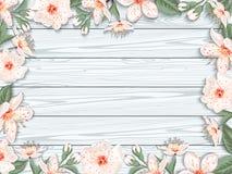Blühende Japan-Kirschbaumnahaufnahme stock abbildung