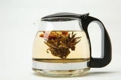 Blühende Knospe des grünen Tees in einer Teekanne lizenzfreie stockfotos