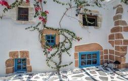 Blühende Liane auf der weißen Wand Lizenzfreies Stockbild