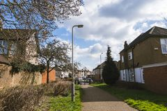 Blühende Magnolie Baum- und briockhäuser auf einer Straße in Hayes Town Lizenzfreies Stockbild