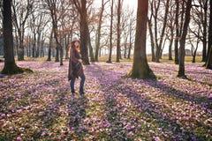 Blühende Natur, Krokusse, junger Reisender stockbilder