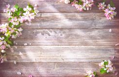 Blühende Niederlassungen des Frühlinges auf hölzernem Hintergrund Lizenzfreie Stockfotografie