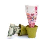 Blühende RMB und verblassen USD Stockfotos