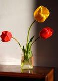 Blühende Tulpen Lizenzfreie Stockbilder