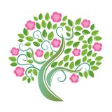 Blühender Baum. Lizenzfreies Stockbild