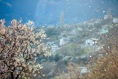 Blühender Baum des Frühlinges und fallender Schnee mit einer malerischen Ansicht des Dorfs in den Bergen stockbilder