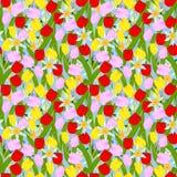 Blühender Frühling blüht nahtloses Lizenzfreie Stockfotografie