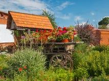 Blühender Garten Stockfotos