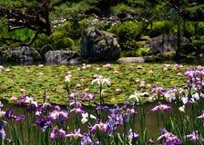 Blühender japanischer Garten von Heian-Schrein, Kyoto Japan Lizenzfreie Stockfotos
