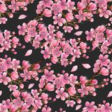 Blühender Kirschbaum des Aquarellfrühlinges verzweigt sich nahtloses Muster stock abbildung