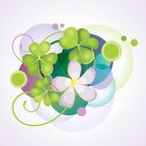 Blühender Klee. Stockbilder