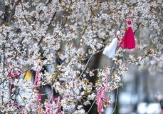 Blühender Mandelbaum mit traditionellen Armbändern 4 lizenzfreie stockbilder