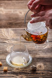 Blühender Tee lizenzfreies stockbild
