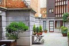 Blühendes Antwerpen Stockfotografie