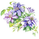 Blüht Aquarellillustration Manuelle Zusammensetzung Hand gezeichnete Skizze für Heiratsdesign Blumenstrauß und Boutonniere Stockfotos