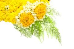 Blüht Behälter Lizenzfreies Stockfoto