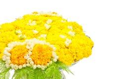 Blüht Behälter Stockfoto