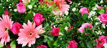 Blüht Blumenstrauß Stockfotografie