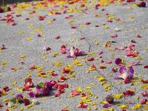 Blüht Dekoration auf dem chinesischen Grab. Stockfotos