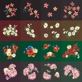 Blüht dekoratives Lizenzfreie Stockfotografie