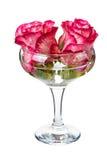 Blüht die Rosen, die in das Glas schwimmen Lizenzfreie Stockfotos