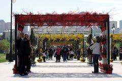 Blüht Feiertag im Winter-Boulevardpark in Baku-Stadt Lizenzfreie Stockfotos