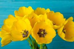 Blüht gelben Blumenstrauß der Tulpen auf blauem backgraund Stockfoto