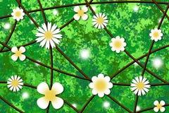 Blüht Hintergrund Stockfotos