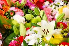 Blüht Hintergrund lizenzfreie stockfotografie