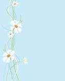Blüht Hintergrund vertikal lizenzfreie abbildung
