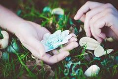 Blüht Kissen Stockfotos