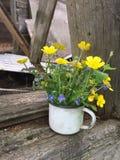 Blüht weißer Emailbecher der Weinlese mit kleinem Blumenstrauß von Butterblumeen Lizenzfreies Stockfoto