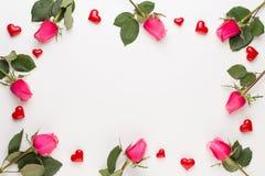 Blüht Zusammensetzung Feld gemacht von der roten Rose auf weißem Hintergrund Flache Lage, Draufsicht, Kopienraum lizenzfreies stockfoto