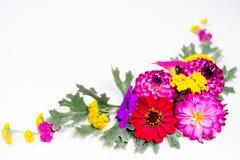 Blüht Zusammensetzungsbild Lizenzfreies Stockfoto