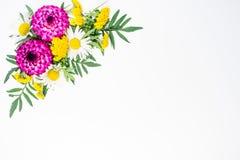 Blüht Zusammensetzungsbild Stockfotografie