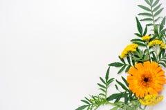 Blüht Zusammensetzungsbild Stockfoto