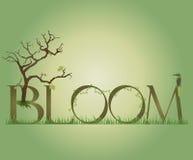 Blüte lizenzfreie abbildung