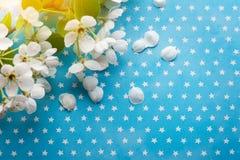 Blüte auf Hintergrund der blauen Sterne Stockbilder