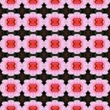 Blüte der Hibiscusblume in voller Blüte nahtlos stock abbildung