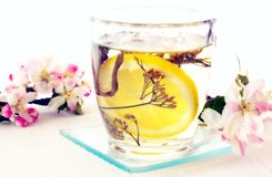 Blüte und Tee Stockfoto