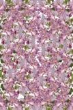 Blüten-Hintergrund Stockbilder