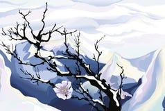Blüten mit Bergen im Hintergrund Stockbilder