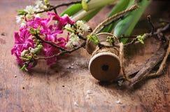 Blütenniederlassung Lizenzfreies Stockfoto