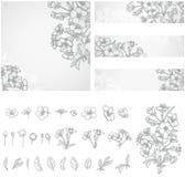 Blütenniederlassung und gezeichnete Illustrationen der Blumen Hand vektor abbildung