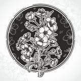 Blütenniederlassung und gezeichnete Illustrationen der Blumen Hand lizenzfreie abbildung