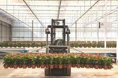 Blütenschweif, der an einem Traktor hängt Lizenzfreie Stockfotografie