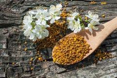 Blütenstaub in einem hölzernen Löffel Stockbild