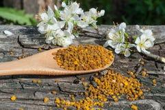 Blütenstaub in einem hölzernen Löffel Stockfotografie