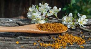 Blütenstaub in einem hölzernen Löffel Stockfoto